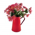 Pitcher 2L Red with Flowers